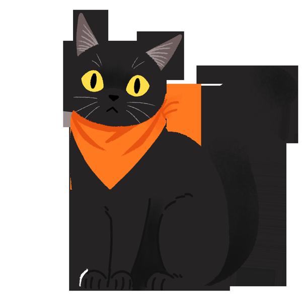 blackcat_hw
